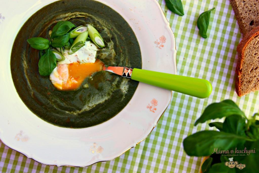 Špenátová krémová polévka (od 6 měsíců)